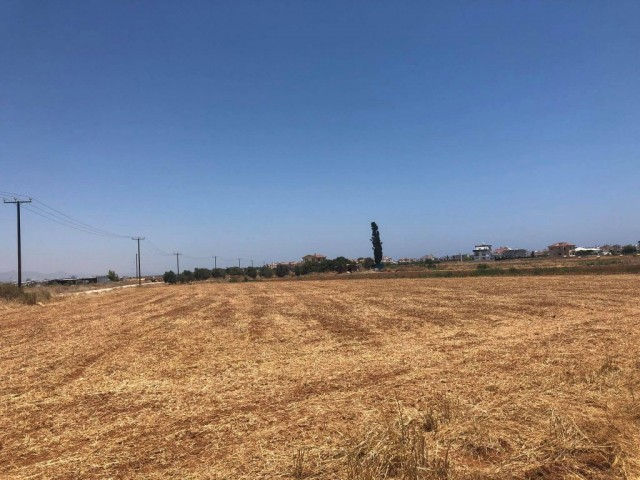 Plot For Sale in Bogaziçi, Iskele