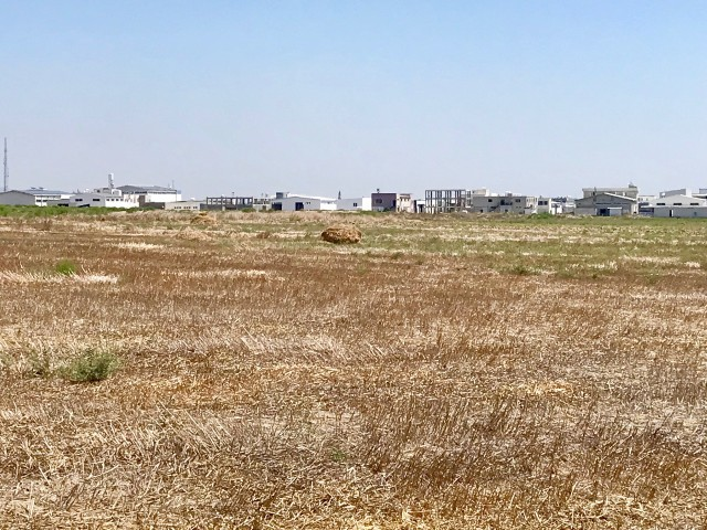 Land For Sale in Alayköy, Nicosia
