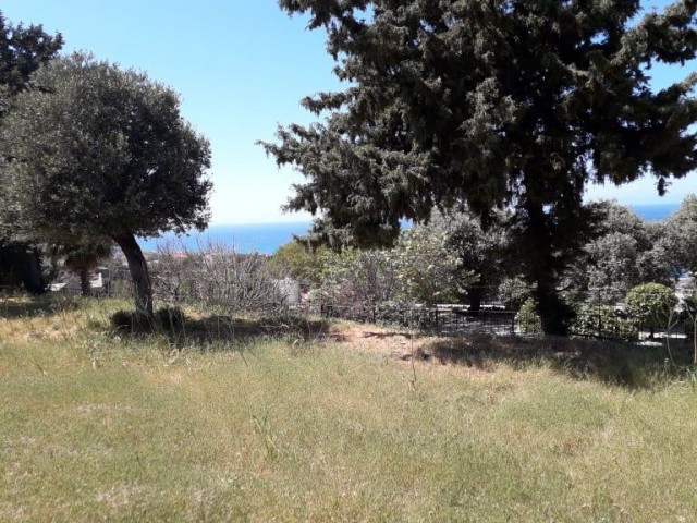 Premium Plot of Land in Esentepe - 1.75 Donum , with 35 % Build, Dual Access and Utilities Easily Connected