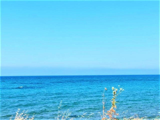 Beachfront land for sale....Unmatched land in Cyprus...