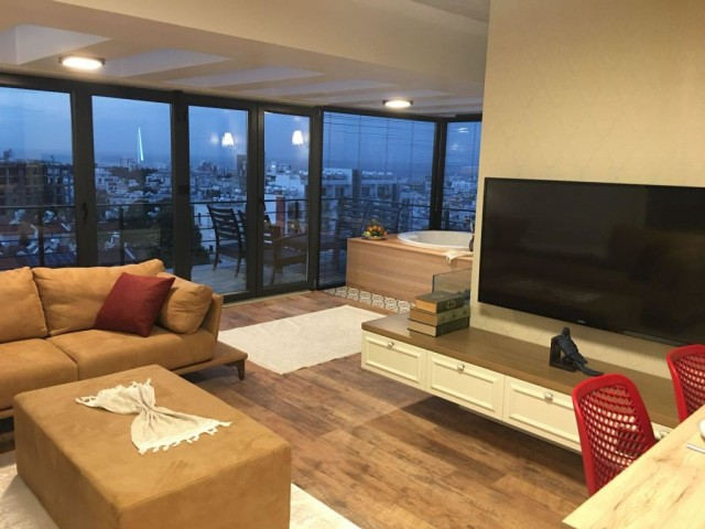 1 bedroom fully furnished luxury apartment for rent