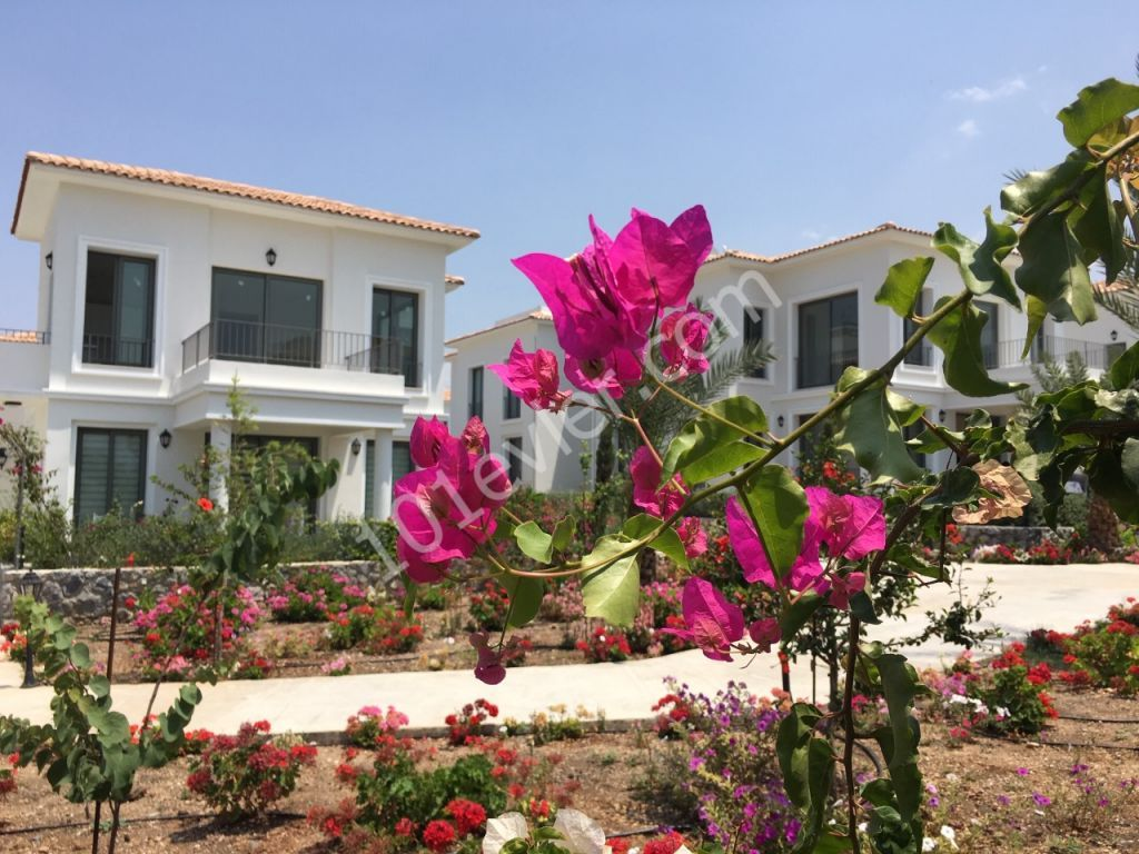 FROM THE OWNER - 2 BEDROOM FLAT WITH MAGNIFICENT GARDEN AT KIBRIS TOWN HOUSE